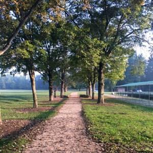 Summer Running   Morning Run   Hydration   Running Coaches' Corner   Running on Happy