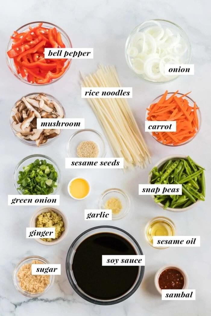Visual list of ingredients needed for making vegan lo mein.