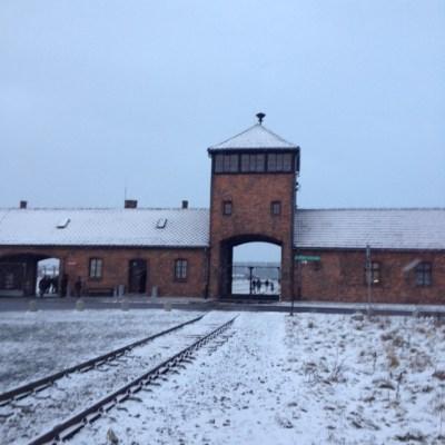 Birkenau poort