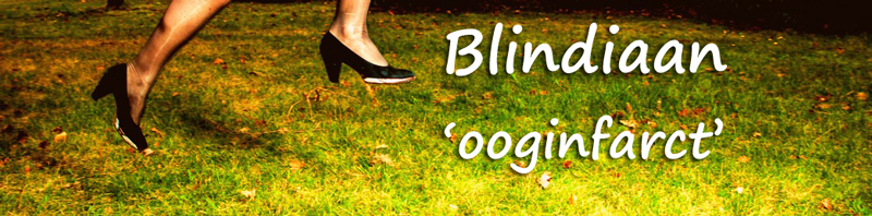 Blindiaan (3) - ooginfarct