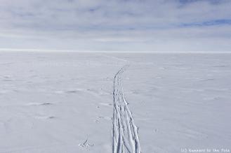 Le dernier Iluyshin a donc quitté l'Antarctique, laissant déserte la base de Union Glacier. Dans quelques jours, le vent forcira emportant nos dernières traces de ski laissées ci et là à travers le continent. Nous savions que ces traces seraient éphémères, mais d'autres, nous l'espérons, viendront à nouveau arpenter bientôt ce désert de glace. Entre temps, la nuit permanente enveloppera ce continent, le rendant encore plus hostile, inhospitalier, et rude. Même si nous sommes, seuls, bien peu de choses face à l'immensité de l'Antarctique, ce continent a besoin de toute notre attention et notre protection.
