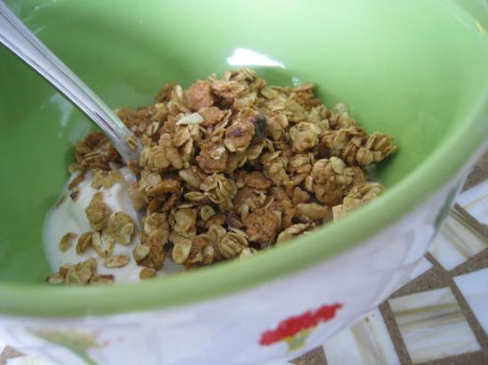 9.17 granola2