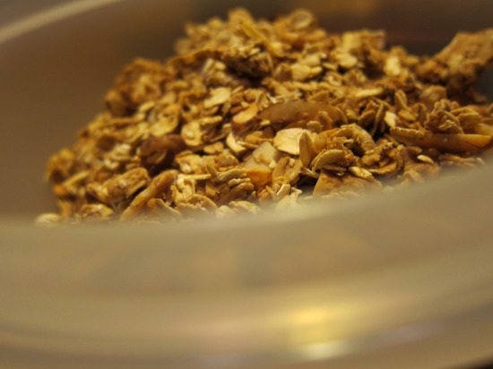 12.1 homemade granola 2