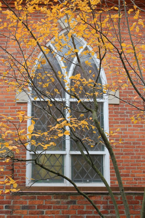 Wonderful Window