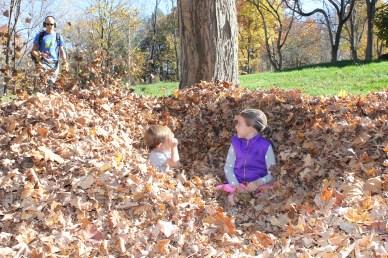 Leaf Fort