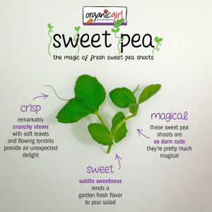 organicgirl sweet pea flavor profile