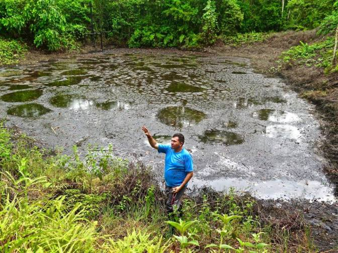 One of the ponds that has been severely affected by oil run off