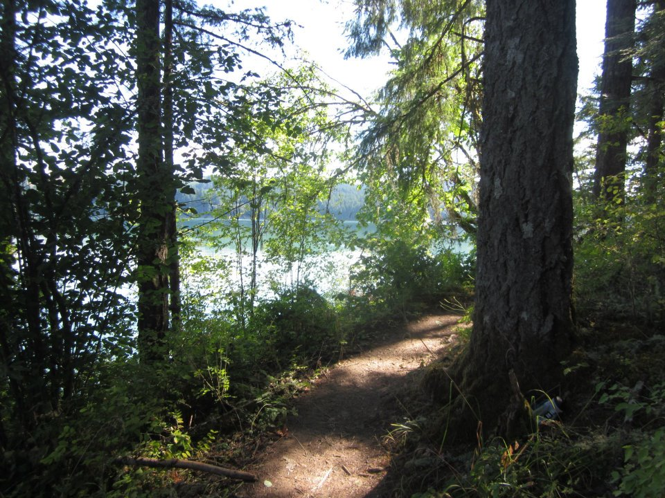 hagg-lake-trail.jpg