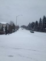 SNOW-Murray-Brockman-teresa