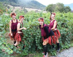 Fairy costumed Runners at the Enchanted Forest Wine Run (Long Run Photos)