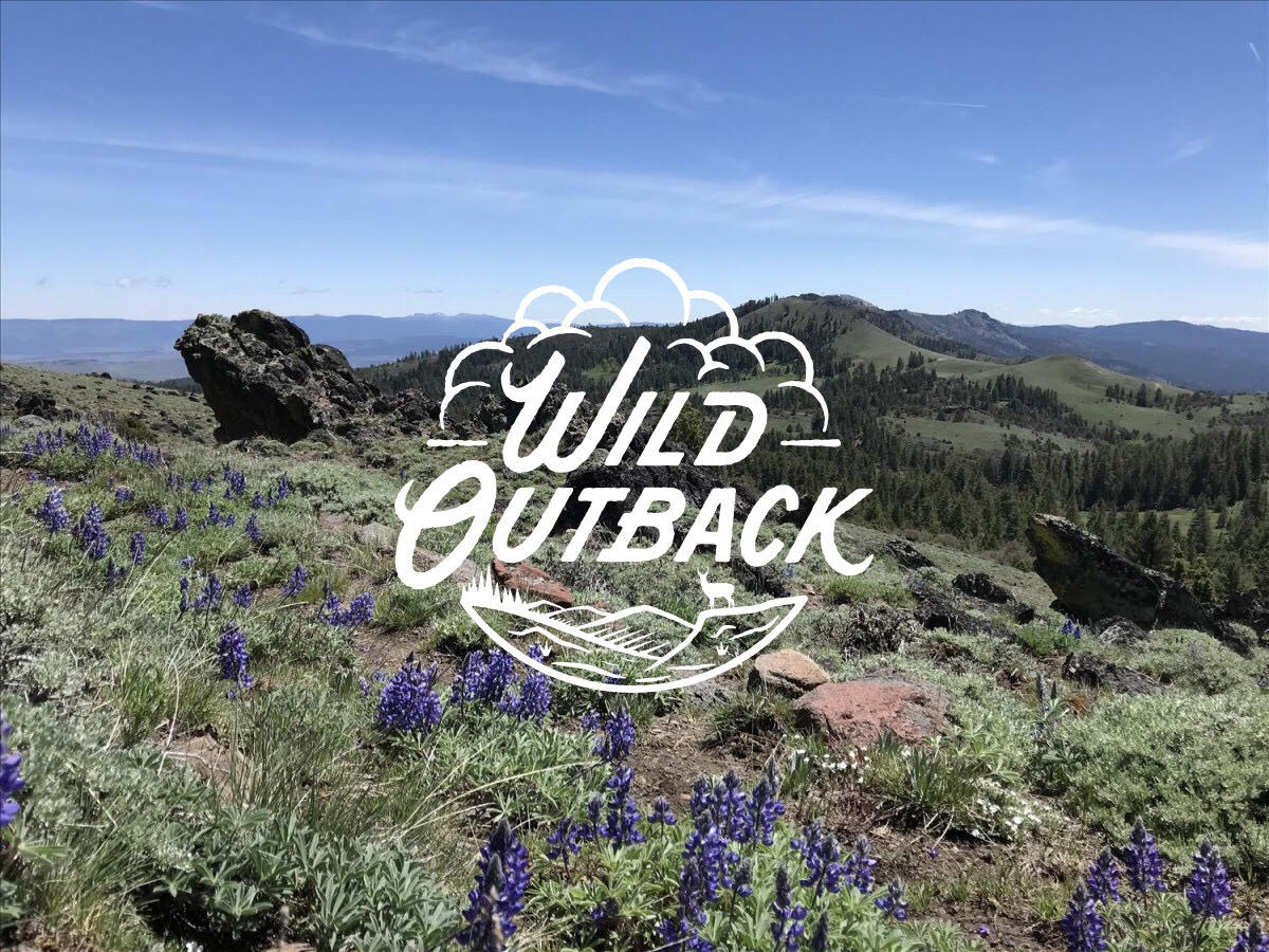 wild_outback