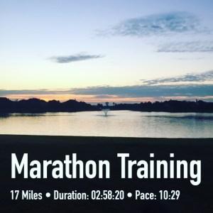 Marathon training week 7 long run