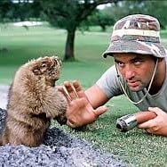 dancing gopher from caddyshack. I'm all right by kenny loggins