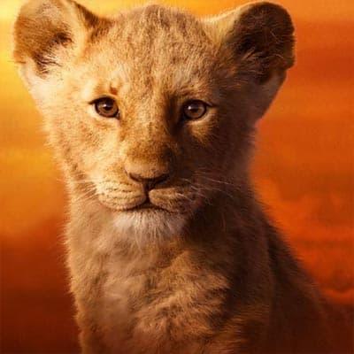 Lion King: Simba (young)
