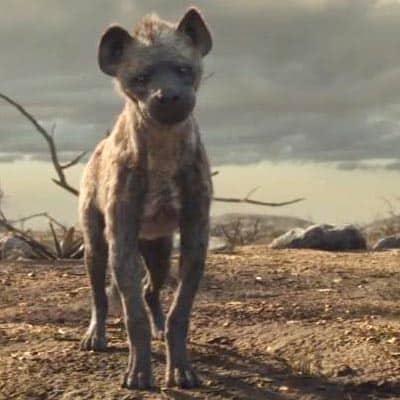 Lion King hyena Kamari