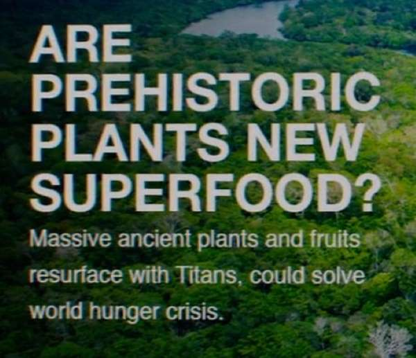 Are prehistoric plants new superfood? Massive ancient plants and fruits resurface with Titans, could solve world hunger crisis.