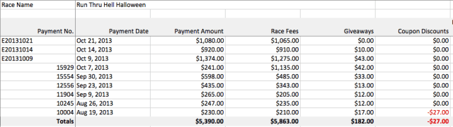 Payment Excel Report