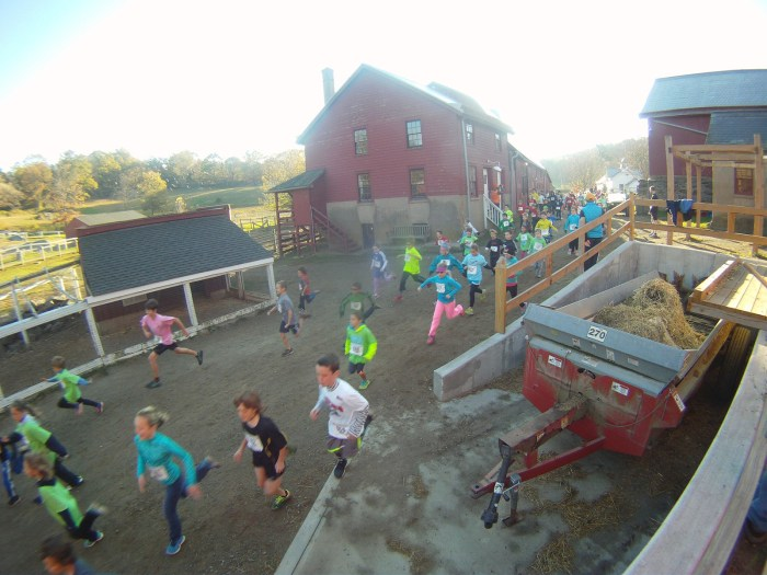 Start of Kids Run The Farm  2013 (7-12 year olds)