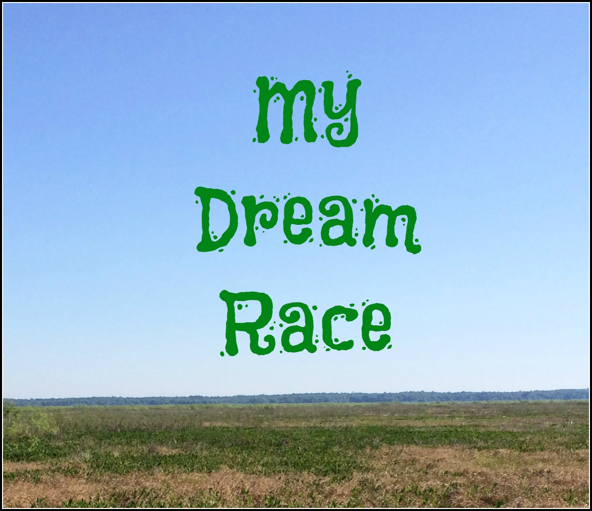 TotR: Dream Race