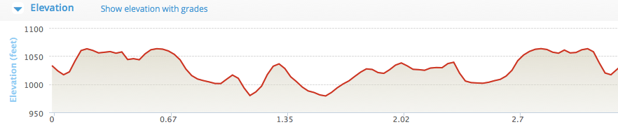 Elevation Chart for my Route in the Hood