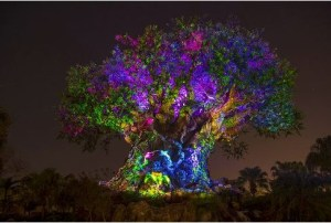Disney World News This Week – Awaken Summer and More!