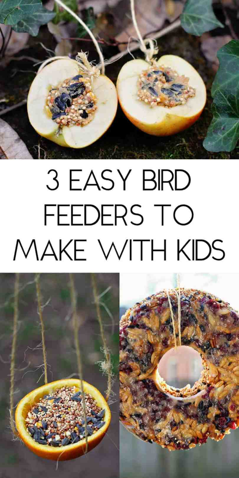 3 easy bird feeders to make with kids