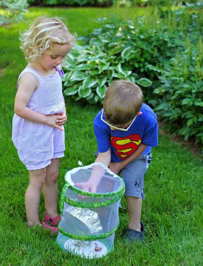 teaching kids about butterfly release