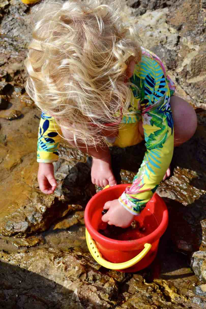 what to pack when exploring tide pools with kids