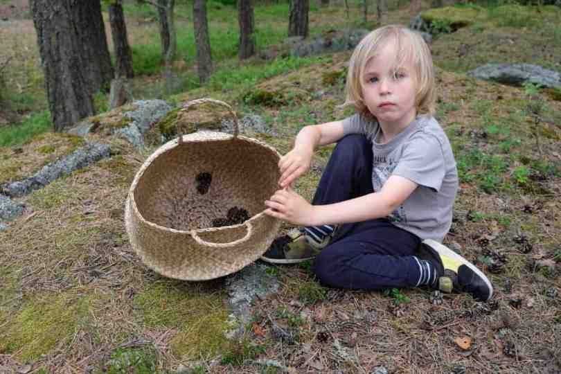 collecting nature items to make mandalas