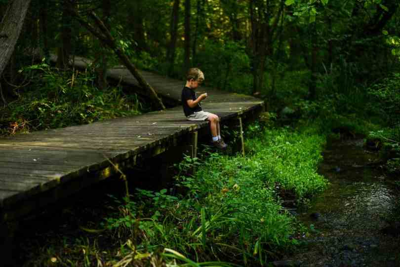 sit spotting nature meditation with kids
