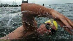 2012_09_22--Boston_Sharkfest_Swim--swimmer_03--M_014058--(PlaySport--100_0003)--now_720v--wmarked