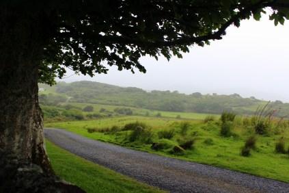 view from Kildalton church