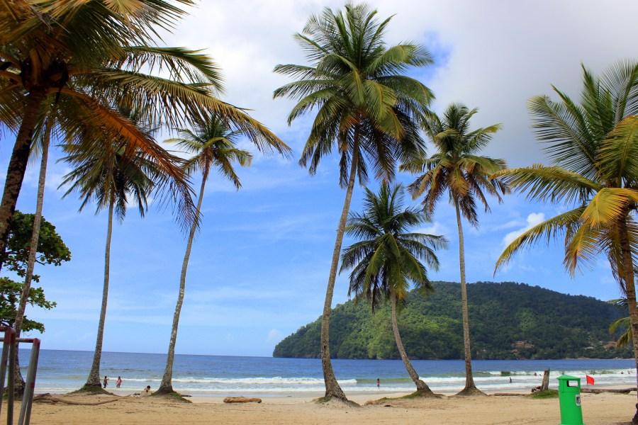 Day 2: Maracas Beach