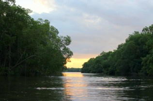sunset at Caroni swamp to end the tour