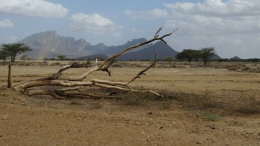 Desert in Ndoto mountains