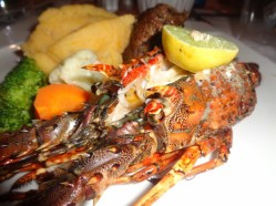 Seafood to relish picture copyright Rupi Mangat