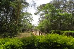 A nice place to stroll - Nairobi Animal Orphanage organized by the Cheetah team - Copyright Maya Mangat