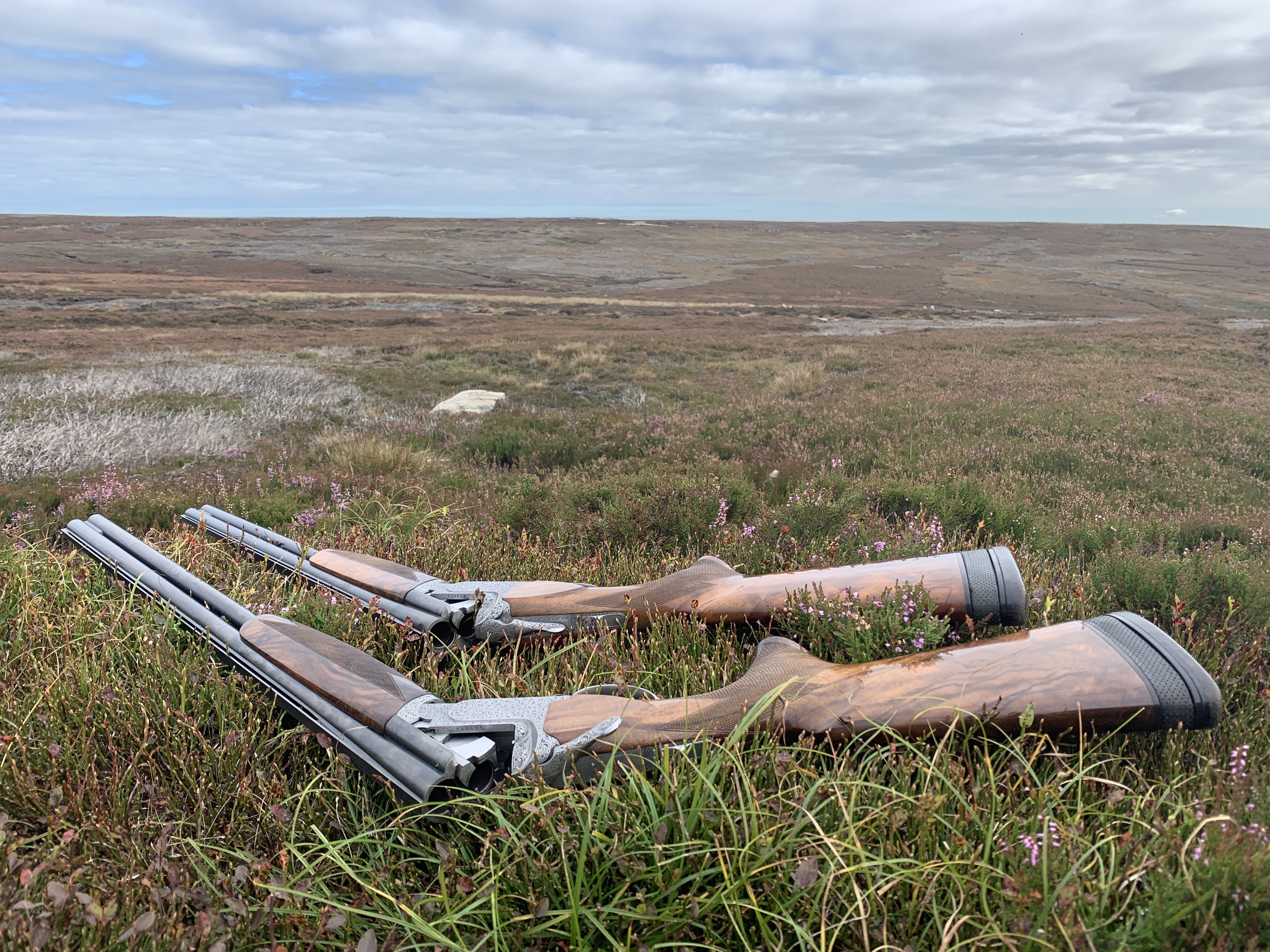 Shotguns laid on the heather in front of the grouse butt
