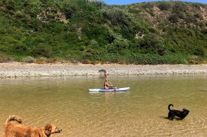 odeceixe paddle board