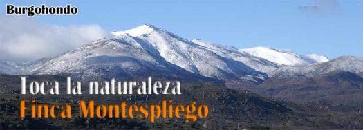 La sierra de Gredos vista desde Finca Montespliego