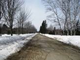 This is the road where I am training until the trails are open.