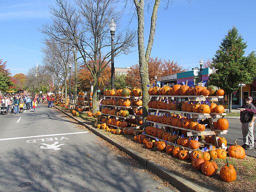 Pumpkins,_Main_Street,_Keene_NH