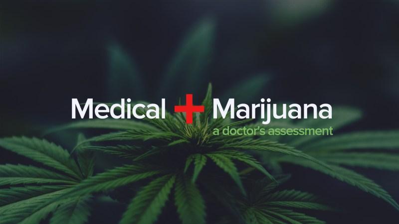 Medical Marijuana, A Doctor's Assessment