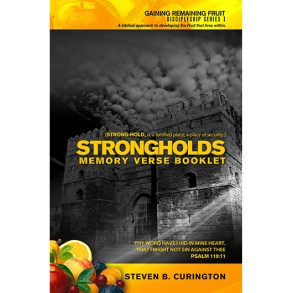 Strongholds Memory Verse Booklet