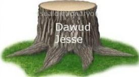 От дерева остался мертвый корень