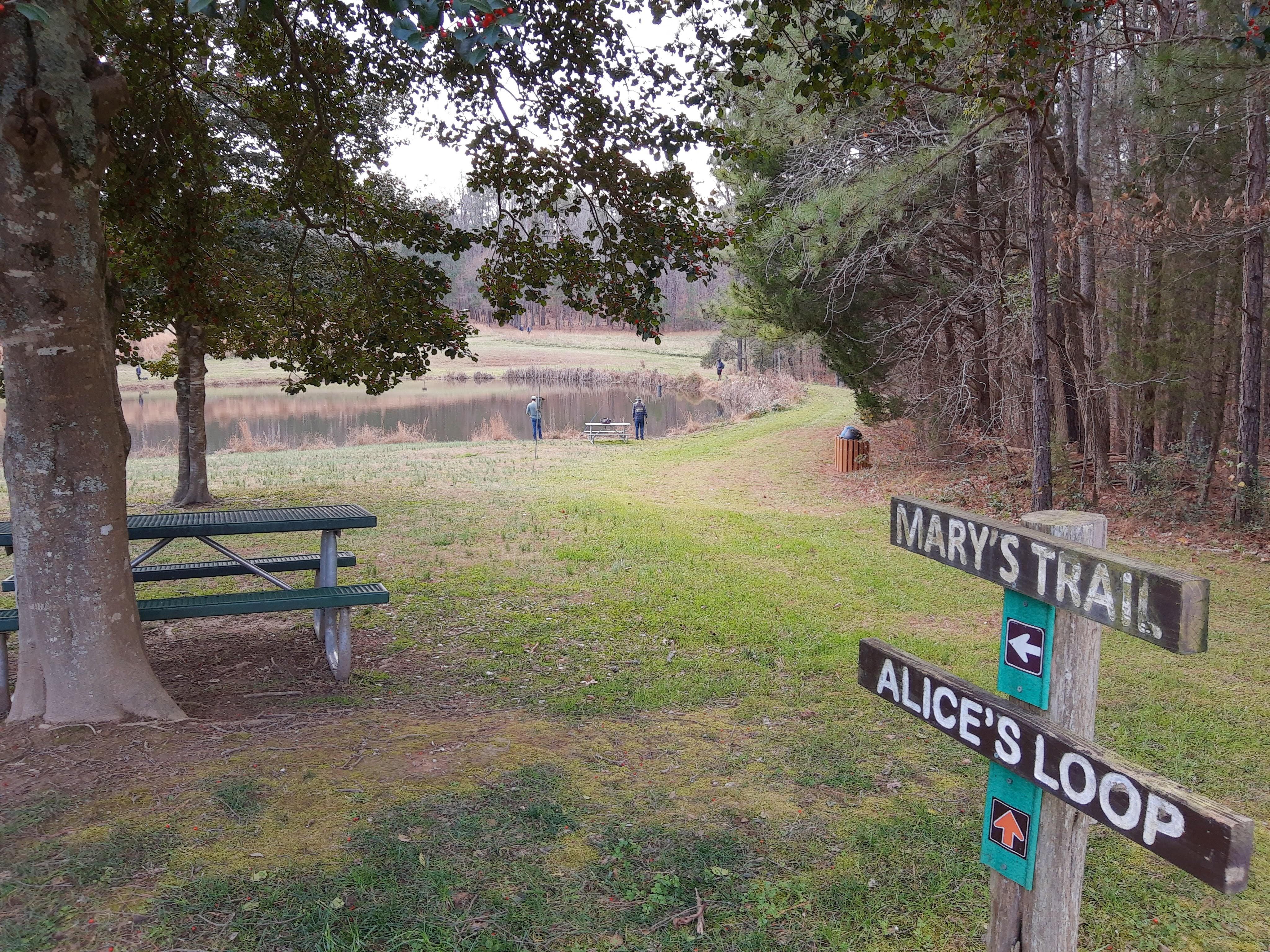Top 5 Trails in Hillsborough, North Carolina