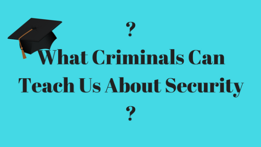 what criminals can teach us about security