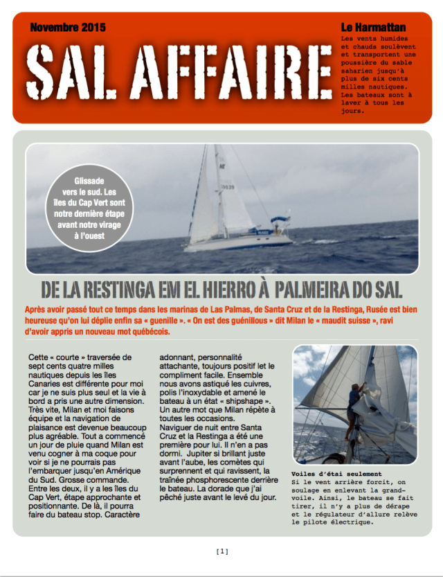 Sal affaire-1