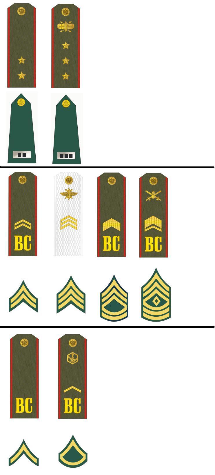 رائد في الجيش الأمريكي الرتب العسكرية الأمريكية ما هي ملامحها المضاعفات الفرعية للجيش الأمريكي