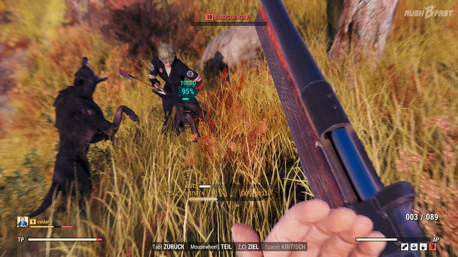 Fallout 76 - Ödland - Koop, V.A.T.S Modus, Gegner: Bissiger Wolf Stufe 10